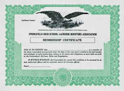 Blank Stock, Membership and Award Certificates from Blumberg Excelsior