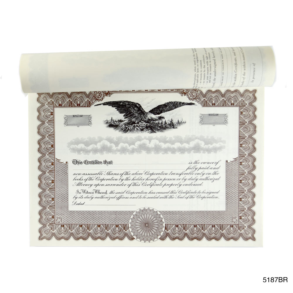 Book of 20 Blank Blue Stock Certificates, LLC