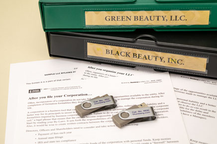 Incorporation Services With Llc Or Corporate Kit